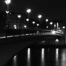 Pont de l'Alma, Paris, France at night by OlivierImages