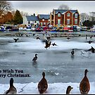 Frozen Lancaster Canal at Garstang. by Lilian Marshall
