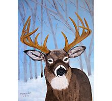 Winter Buck Photographic Print