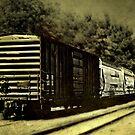 The Evening Train by Scott Mitchell
