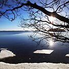 The Ice Melts - Sweden by mattnnat