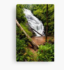 King Creek Falls, South Carolina Canvas Print