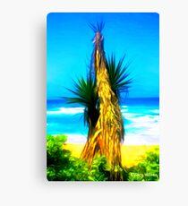 Dune Palm Canvas Print