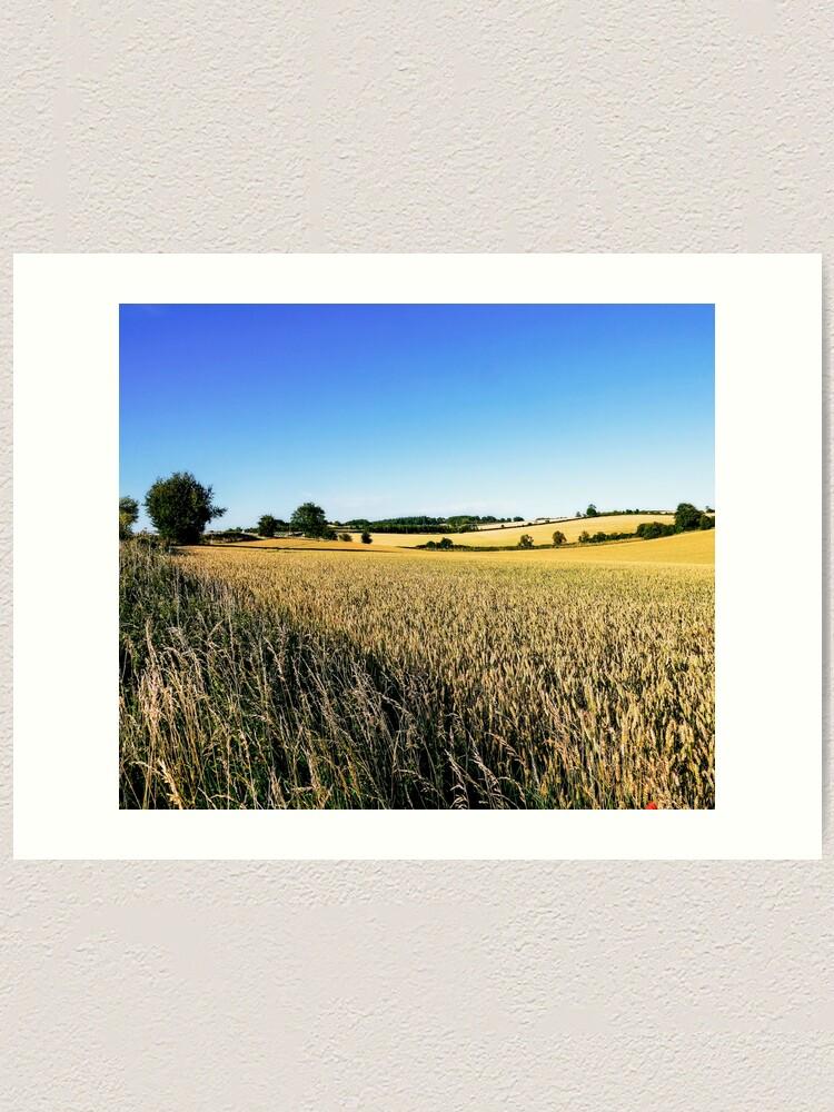 Alternate view of Summer Harvest Art Print