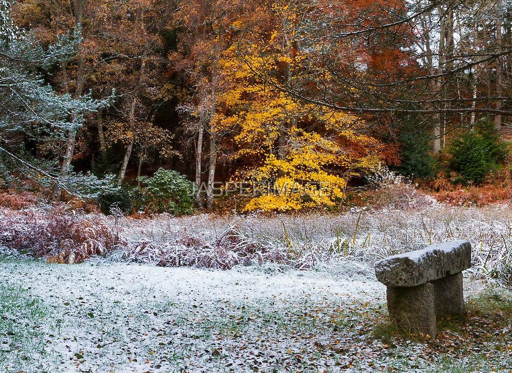 Cold winter seat. by JASPERIMAGE