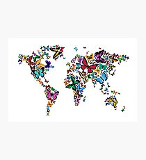 Butterflies Map of the World Photographic Print