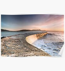 Sunkissed Cobb at Lyme Regis Poster