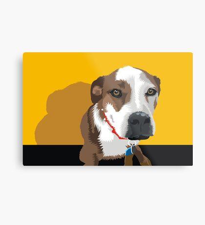 Polly the Wonder Dog Metal Print