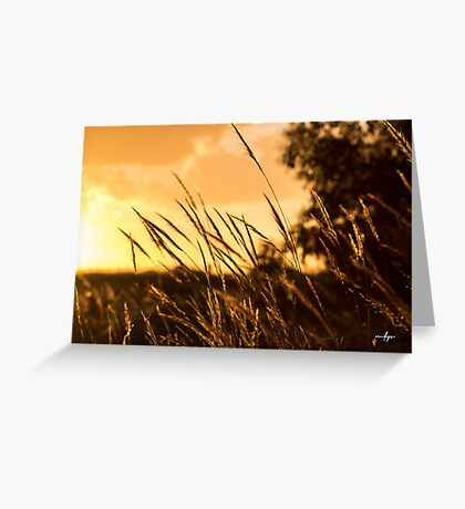 Days Golden End Greeting Card