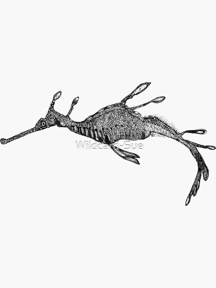 Jennifer the Weedy Sea Dragon by Wildcard-Sue