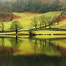 Green Rydal with a Hint of Russet by Jamie  Green
