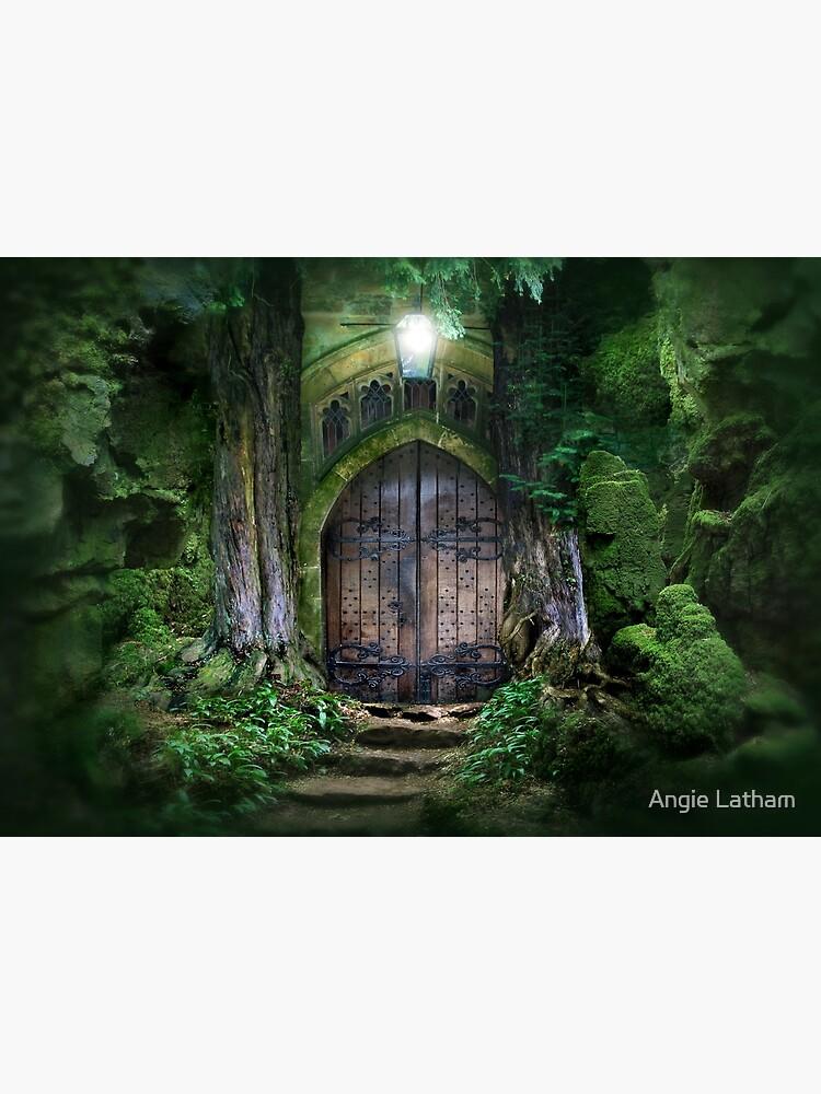Door into other realms by AngelaBarnett