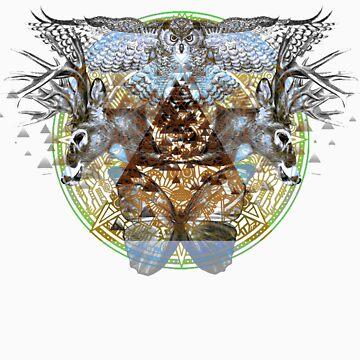 Symmetry :: v1 by ImHigh