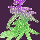 green washington. by bristlybits