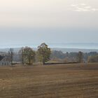 October afternoon. Hedmark, Norway. Photo taken from the bus. by UpNorthPhoto