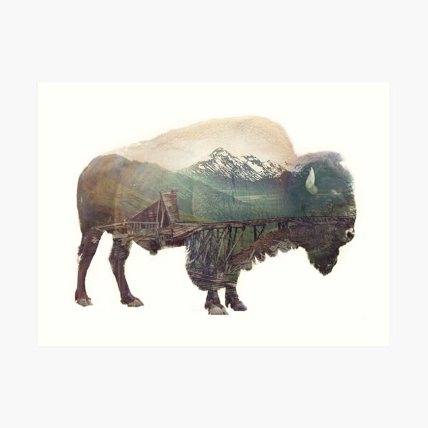 Bison and Independence Mine Art Print