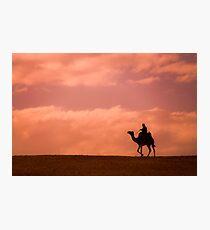 Lámina fotográfica Sunset Camel Rider