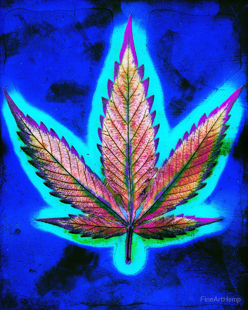 Hemp Lumen #10 Marijuana/Cannabis by FineArtHemp