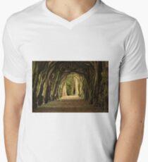 Cloister at Gormanston College V-Neck T-Shirt