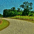 The Country Road - greeting card by Scott Mitchell