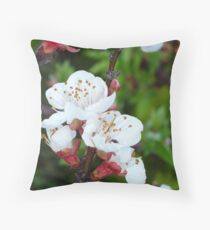 Apricot Blossom At Dawn Throw Pillow