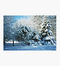 Winter Wonderland-Snow Photographic Print
