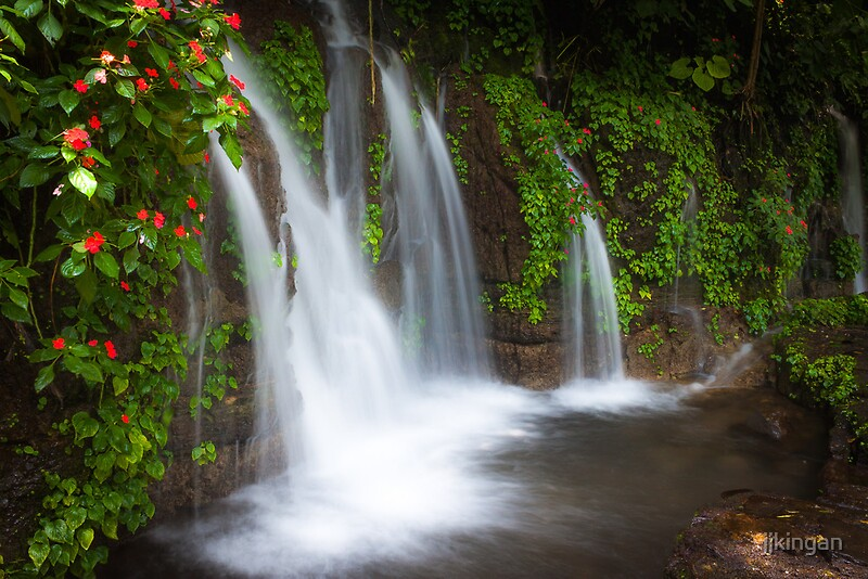 Quot Jungle Waterfall And Flowers At Juayua El Salvador Quot By