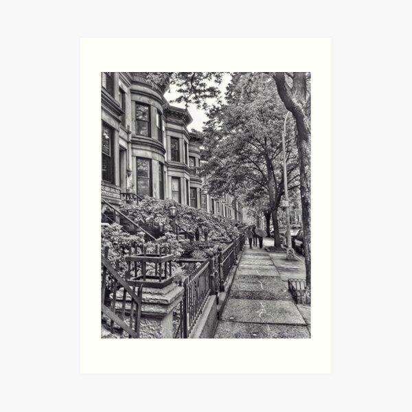 Park Slope, Brooklyn, New York Art Print