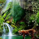 In The Jungle by Cliff Vestergaard