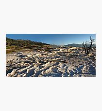 Yellowstone, Minerva Terrace, Mammoth Hot Springs Photographic Print