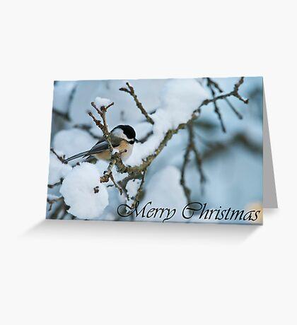 Chickadee Christmas Card 1 Greeting Card