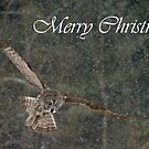 Great Gray Owl Christmas Card 8 by Michael Cummings
