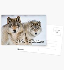 Timber Wolf Christmas Card 7 Postcards