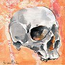 Human Skull by AaronBir