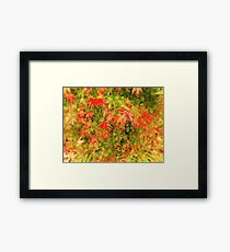 Warm December Framed Print