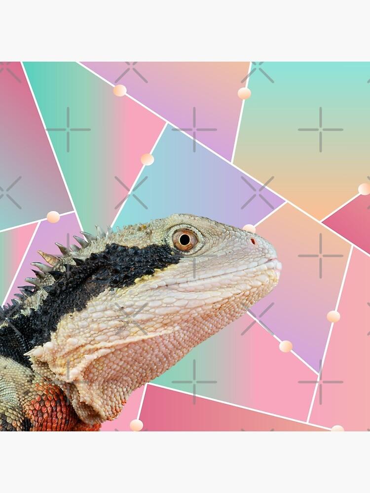Geometric Pattern Australian Water Dragon by snibbo71