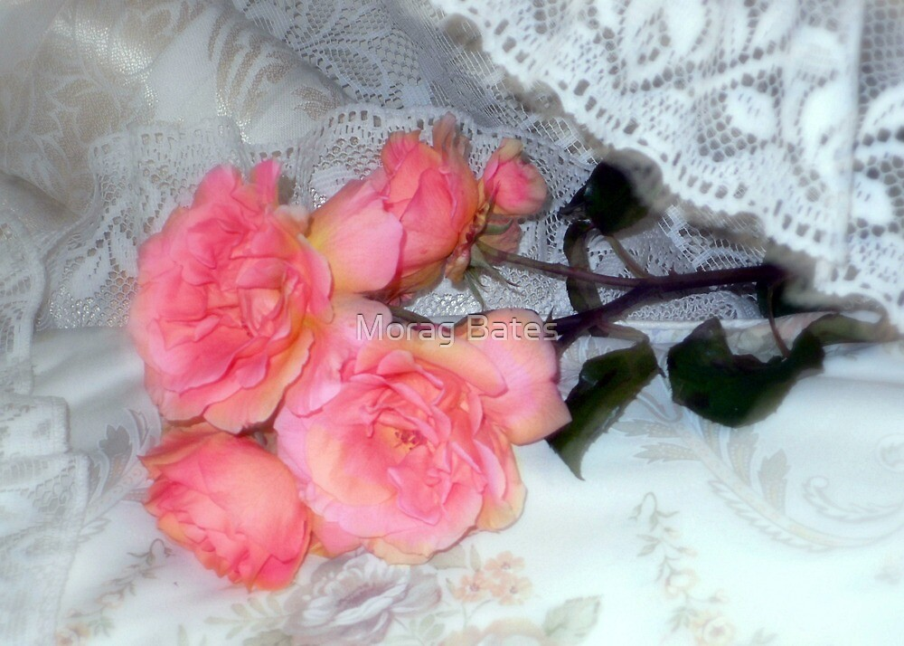 Roses on my Pillow by Morag Bates