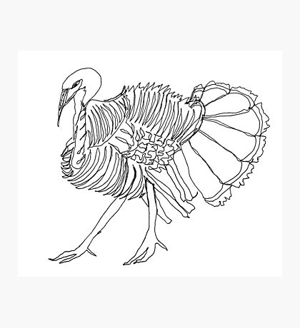 gobble gobble Photographic Print