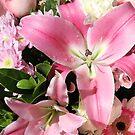 Assorted Flowers by Robyn J. Blackford by aussiebushstick