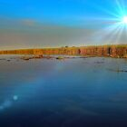 Late evening in the delta ! by jozi1