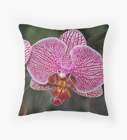 October Orchid Throw Pillow