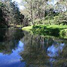 Tallebudgera Creek in Winter by aussiebushstick