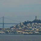 A veiw of San Fransisco from the Golden Gate Bridge by kellimays