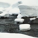 Snow Bank by teresalynwillis