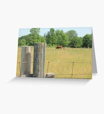 Sights of Summer Greeting Card