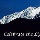 Celebrate The Light by teresalynwillis