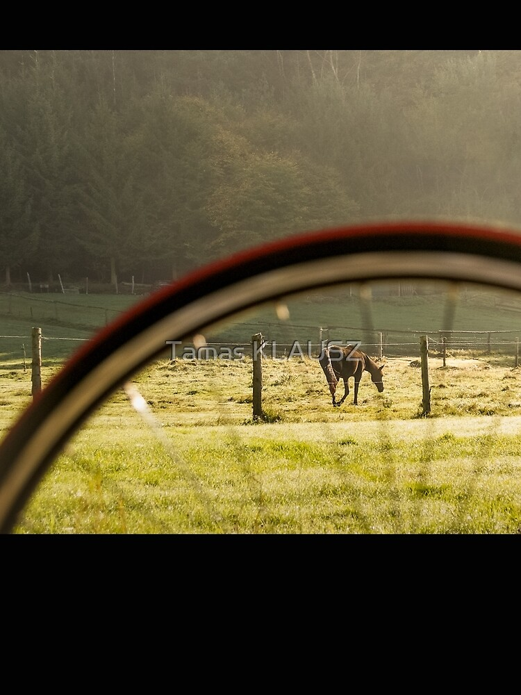 Horse and Bike by Blauer
