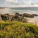 Cliff over Gwythian Beach by bethadin