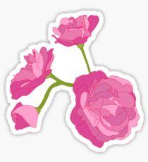 Pink Camelia Sticker