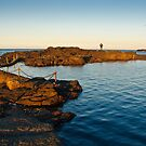 Coastal Pool at Sunset - Kiama by Dilshara Hill